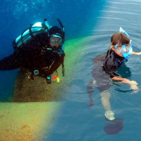Divers Den Snorkeling Tours and Private charters